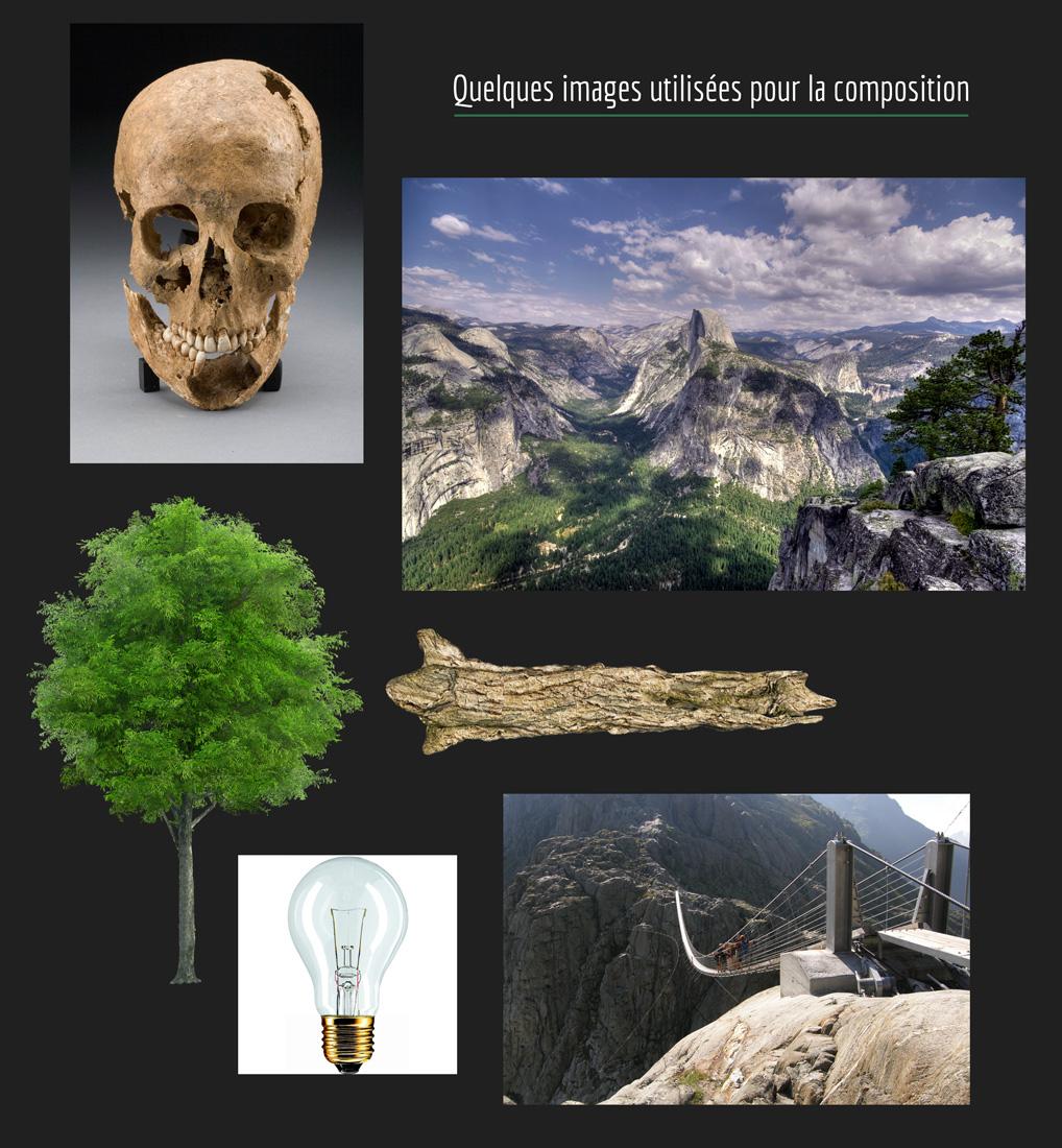 landscape_skull-6