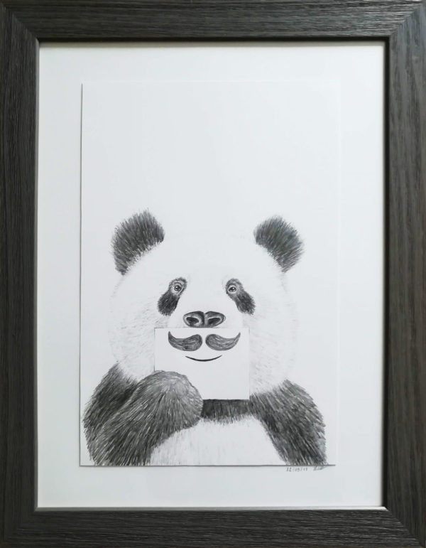 illustrations panda dessin drawing draw